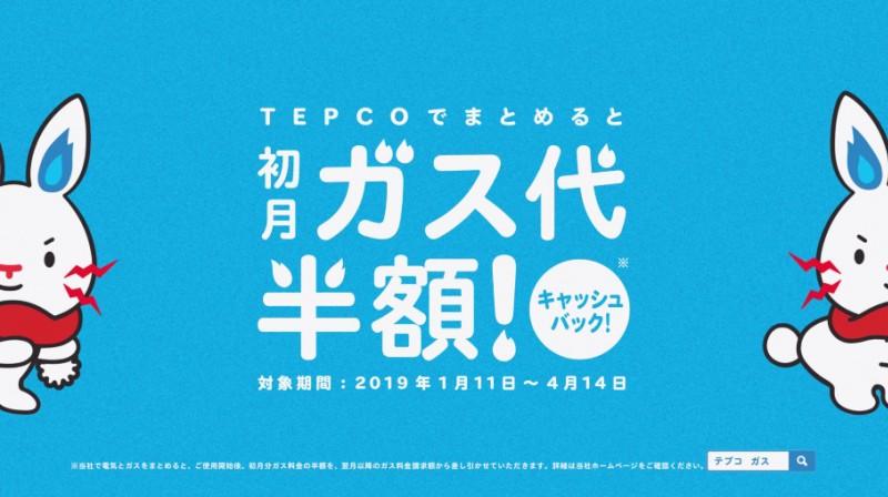 tepco_1